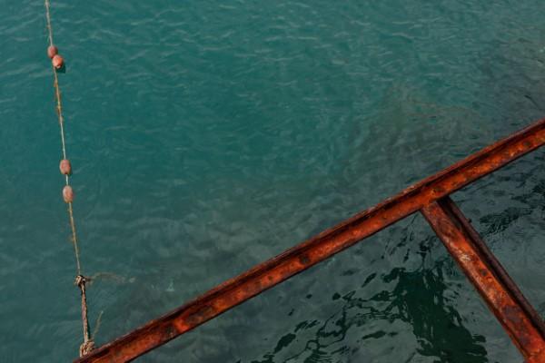 water background image by Karolina Grabowska from Kamboompics