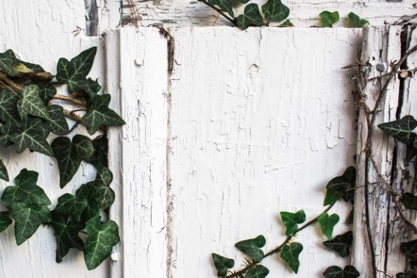 Wall background by Kelli Tungay from Unsplash.com stock photos